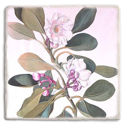Botanical 06