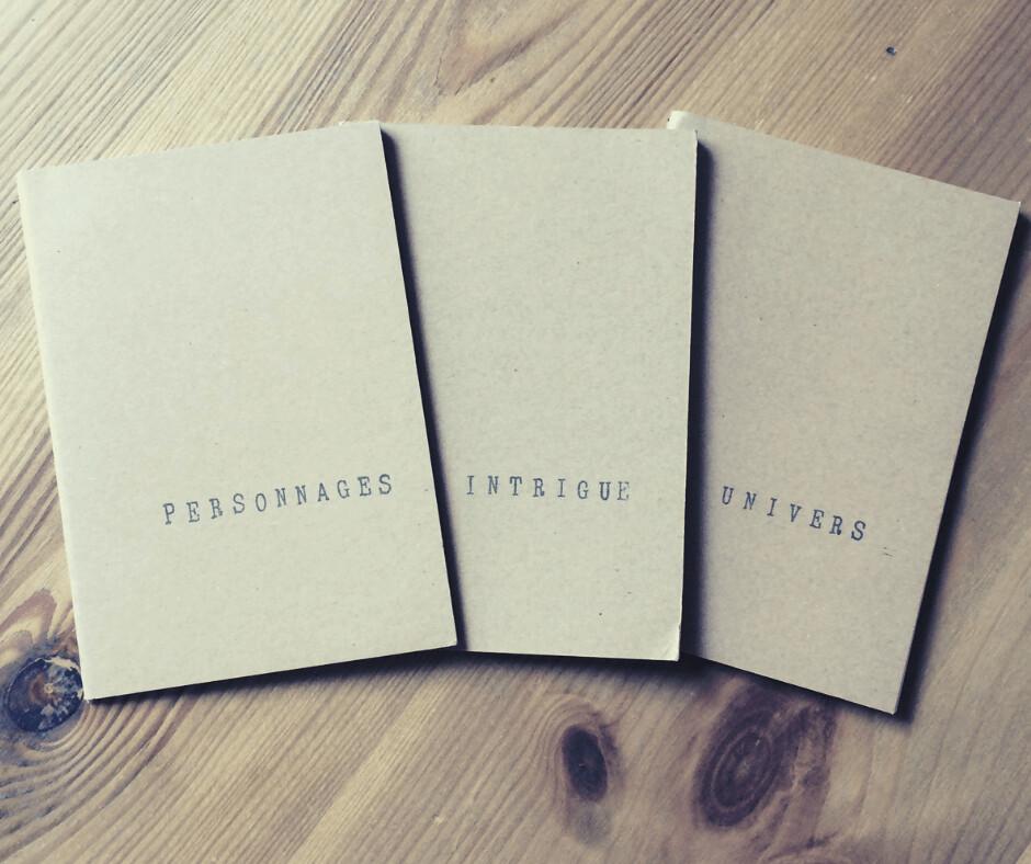 Lot de 3 carnets