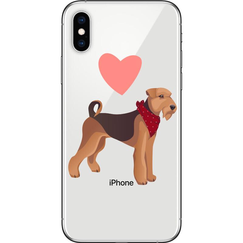 Cute airdale terrier dog