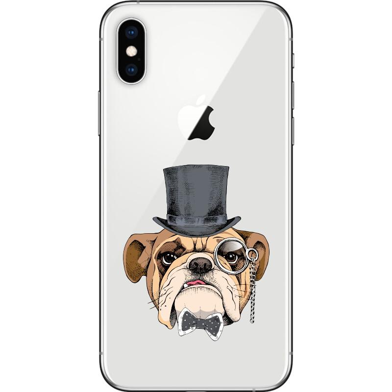 Bulldog portrait in a bowler hat