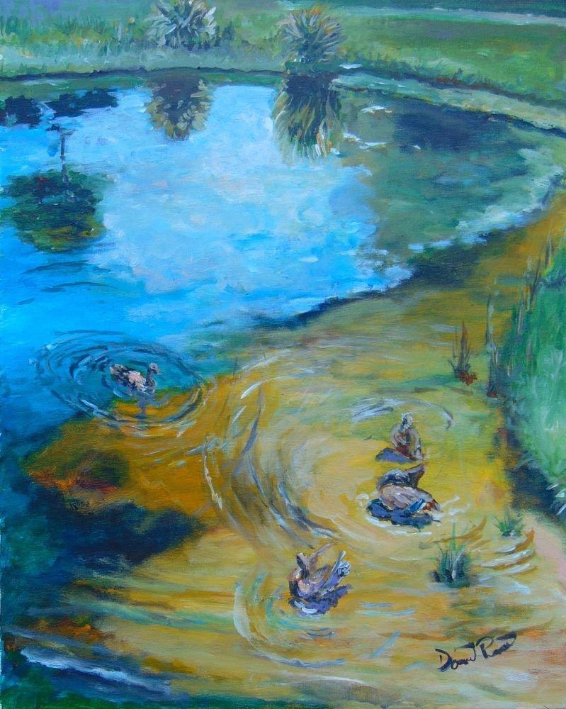 Duck Pond N. Wickham Park - DBP006