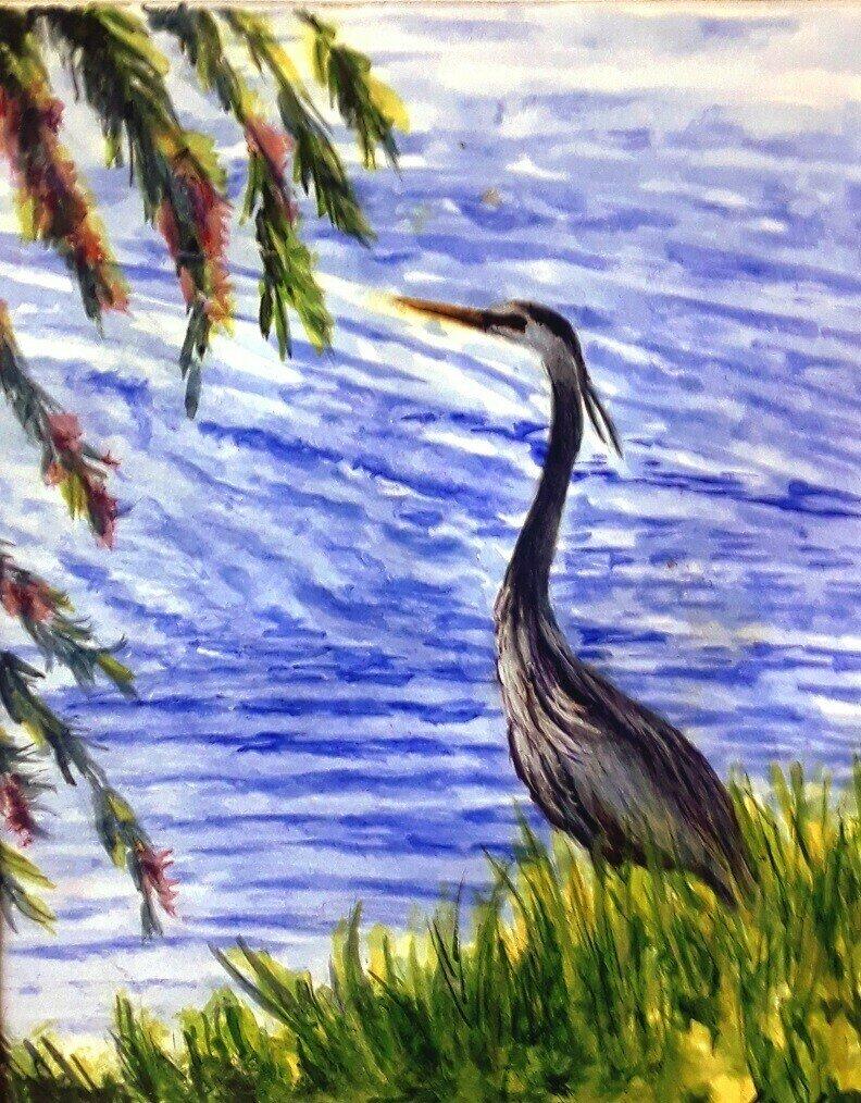 Great Blue Heron - CRL065