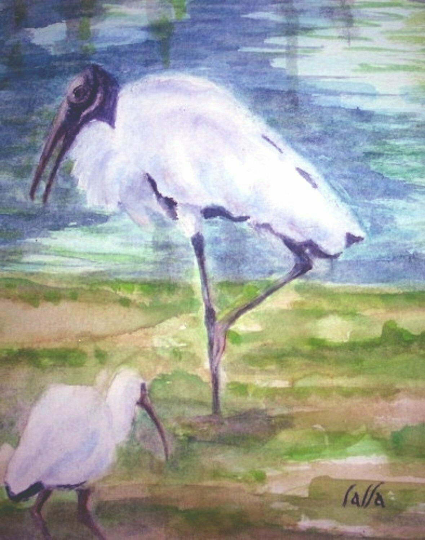 Wood Storks card - CRL020