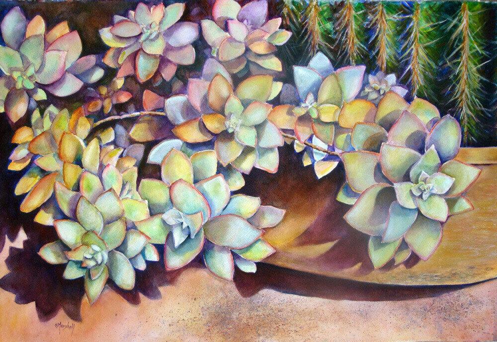 The Cactus Garden Print - CSM015