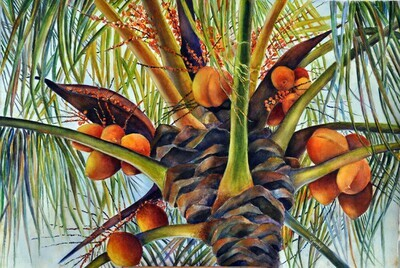 A Lovely Bunch of Coconuts Print - CSM014