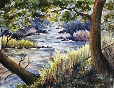 My Canada Creek - CSM038