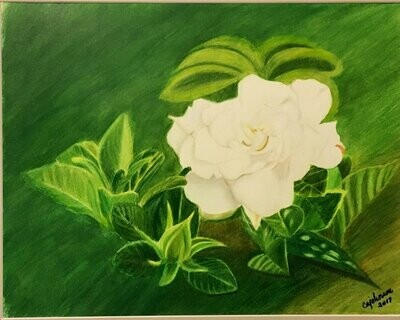 Lonely Gardenia Card - CAJ041
