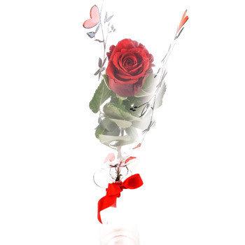 779a61ccc83 Naisele! – Mileedi: Lillekulleriga lillede saatmine üle Eesti