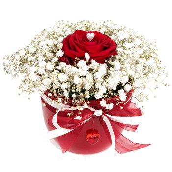 fd0ac63c06f Tähtsale naisele – Mileedi: Lillekulleriga lillede saatmine üle Eesti