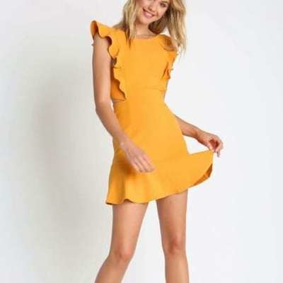Willow Ruffled A-Line Dress