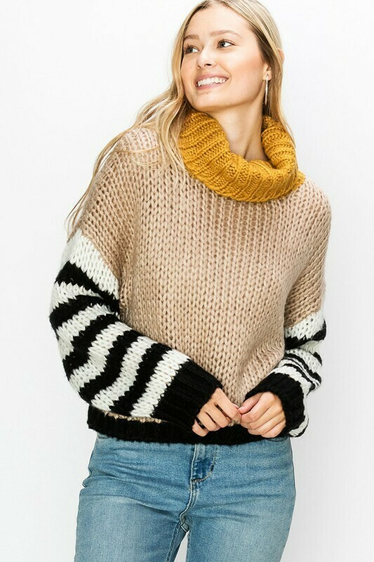 Turtle Neck Striped Sweater