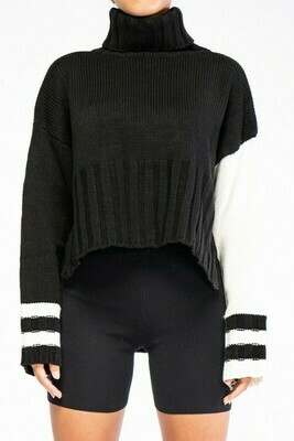 Turtle Neck Contrast Sleeve Striped Sweater Top