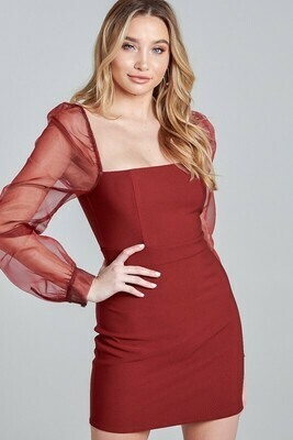 Becky Mesh Sleeves Dress