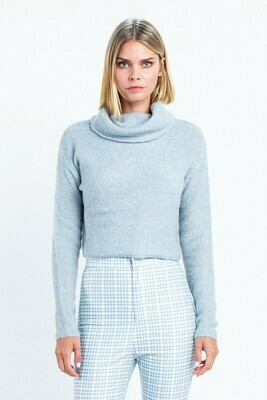 Turtle Neck Fitted Sweater