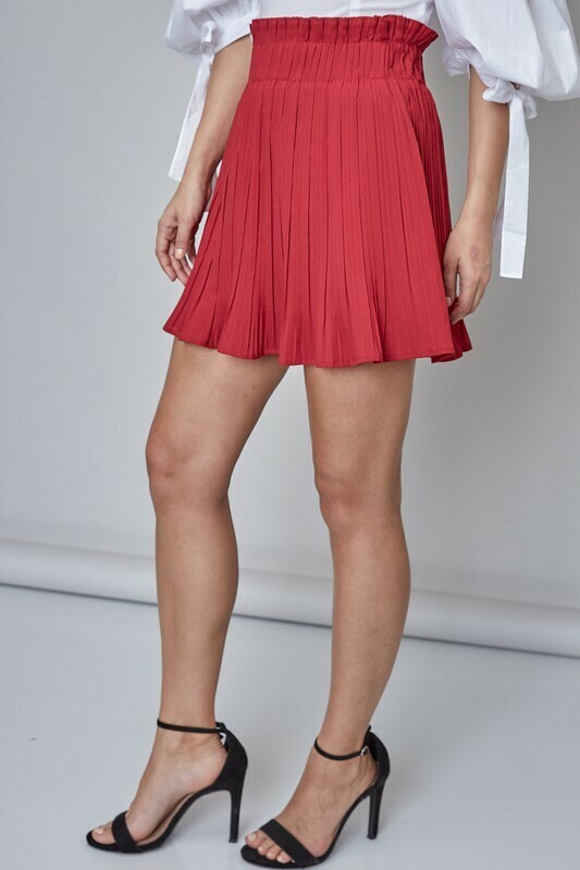 Pleated Detail Skirt