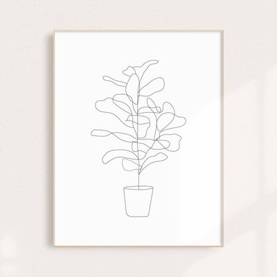 Fiddle Fig Wall Art Print 11x14