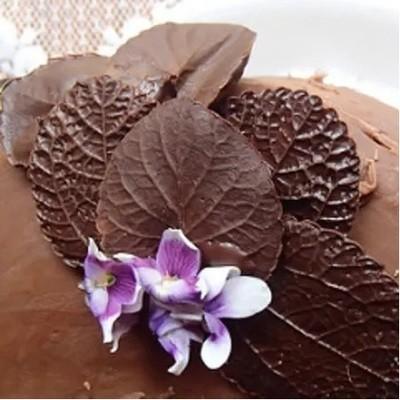 Dark Chocolate Infused Balsamic Vinegar