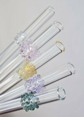 Reusable Eco Straw