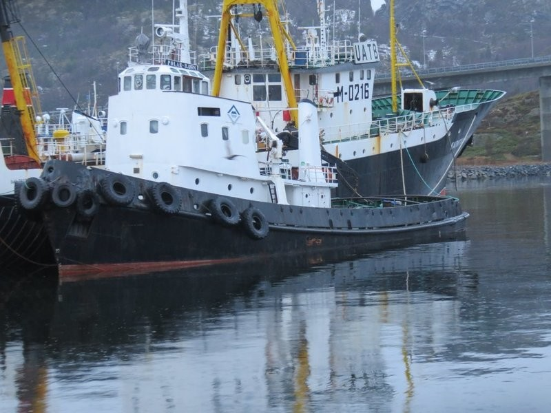 Des 2017 Taubåten Polarbjørn