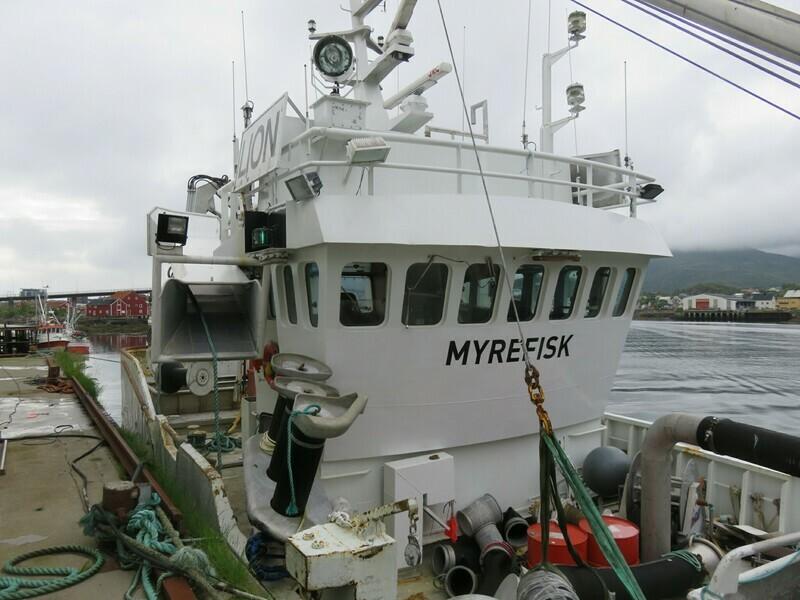 1. Styrhus     Myrefisk