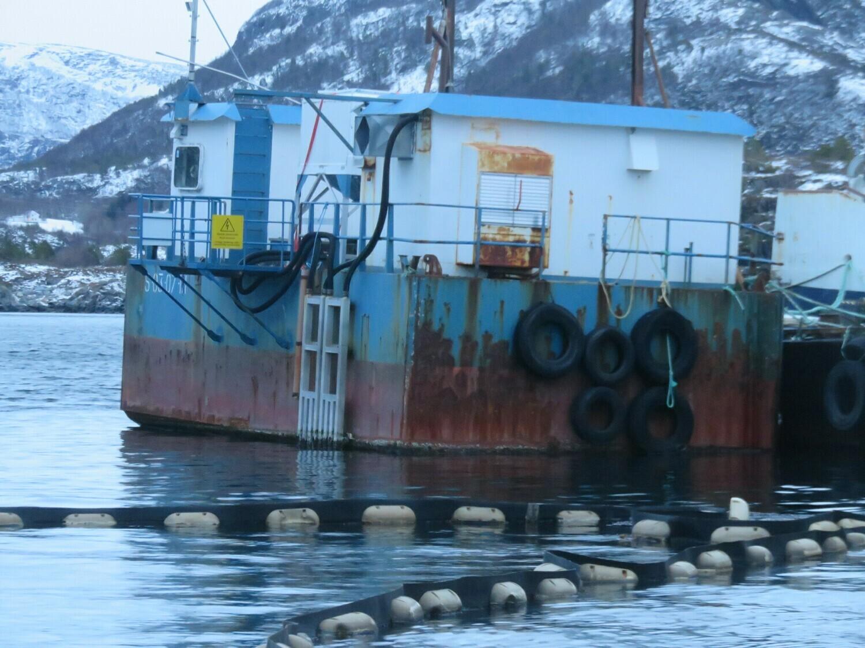 "nov 2019 ""Havhest flåten""      ankommet til hugging"