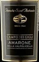 Tenuta Sant'Antonio Campo dei Gigli, Amarone della Valpolicella 2012 (750 ml)