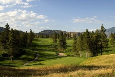 TOTA Golf Sponsorship - Hole