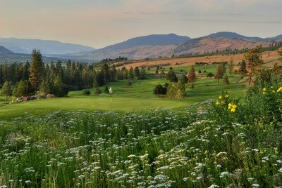 TOTA Golf Sponsorship - Dinner