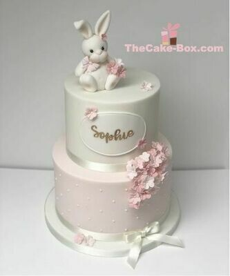 2 Layers Bunny on Top Cake