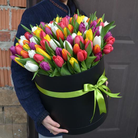 101 тюльпан Микс Премиум