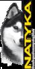 Natyka корма для собак и кошек в Москве
