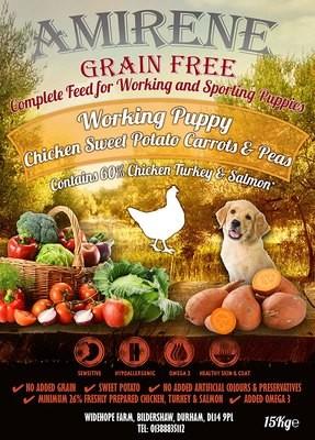 PUPPY - Chicken with Turkey & Salmon
