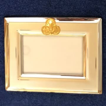India Stewart Gold Trinity Logo on Silver Frame