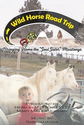 Documentary - Wild Horse Road Trip ~ The Journey to bring the Soul Sisters Home