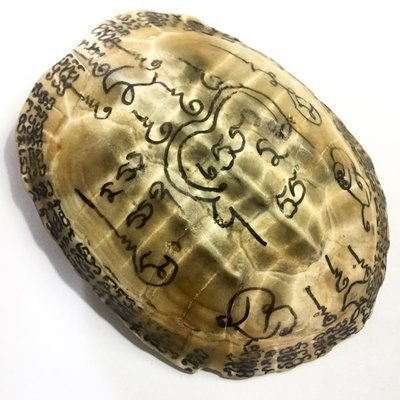 Tao Ruean Maha Pokasap Jarn Mer Temple Turtle Shell with Handmade Magic Spell Inscriptions - Luang Por Prohm Wat Ban Suan