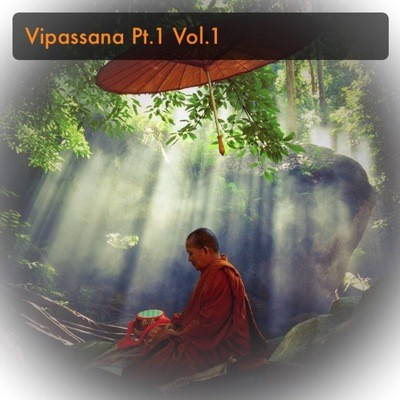 How to Practice Vipassana Vol. 1 Part 1 - Manifest Practice through Understanding the Practice - Ajarn Spencer Littlewood