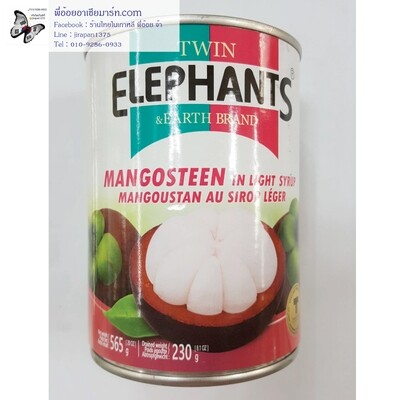 มังคุด Mangosteen in syrup  ตรา Twin ELEPHANTS & Earth