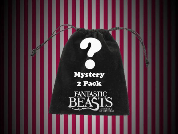 Mystery Bag - 'Magical Pack' 2 Pack Bag