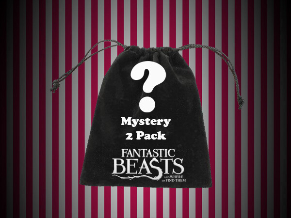 Mystery Bag - 'Magical Pack' 2 Pack Bag