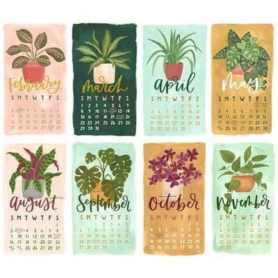 2020 Stump Calendar