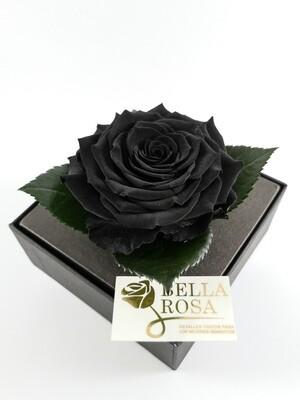 Rosa Preservada Negra Caja Acrílica