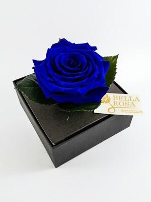 Rosa Preservada Azul Caja Acrílica