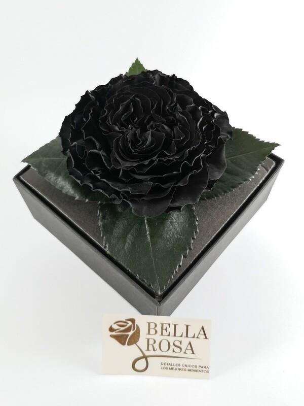 Rosa Preservada Carmen Negra Caja Acrílica