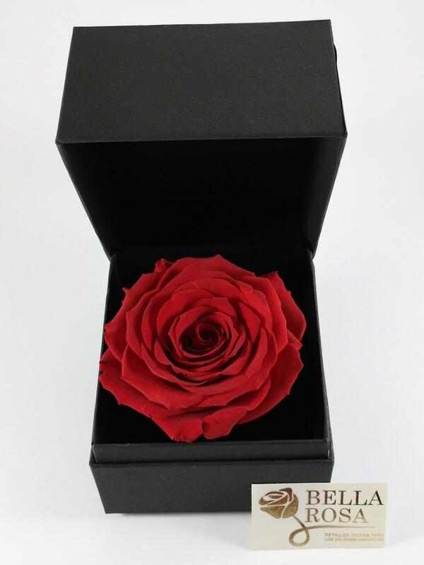 Rosa Preservada Roja ( 9.5x 9.5) en Caja Negra Elegante (9x8cm)