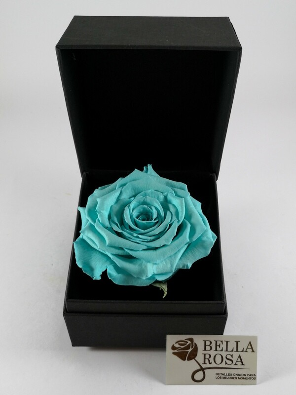 Rosa Preservada Celeste en Caja Negra Elegante