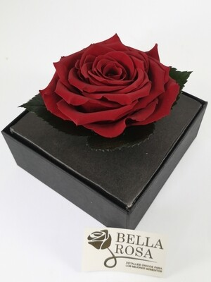Rosa Preservada Rojo Corinto Caja Acrílica