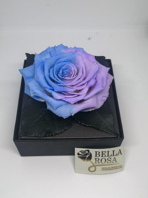 Rosa Preservada Celeste con Morado Caja Acrílica
