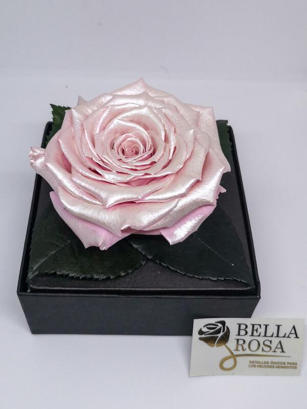 Caja acrílica con rosa preservada
