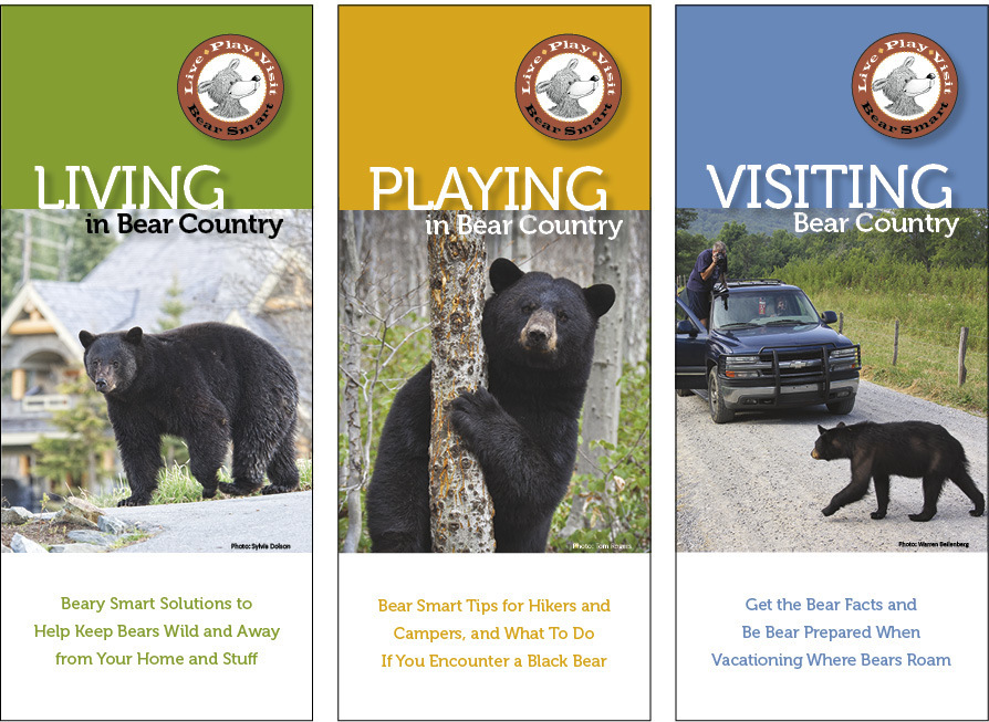 Bear Smart Pocket Guides (set of 3) BSG-set