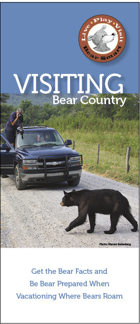 Visiting Bear Country